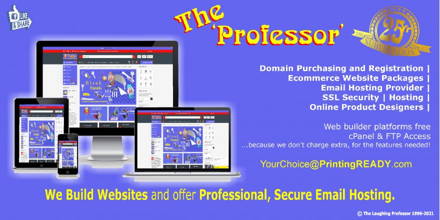 The Professor, Domain and Hosting Provider